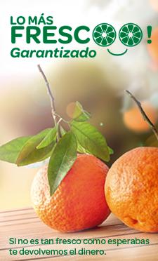 Supermercado Online Carrefour