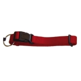 Collar para Perro Nylon Premium Doble 40-65Cm / 25Mm