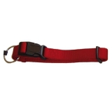 Collar para Perro Nylon Premium Doble  22-35Cm /15Mm