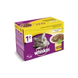 New Generation Whiskas Adulto Aves 12x100gr