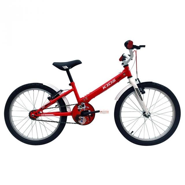 Bicicleta Juvenil Niño Indur 20