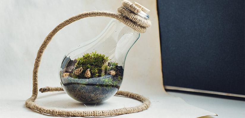 Ideas para reciclar bombillas y usarlas como decoración