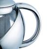 Tetera de Acero Inoxidable y Cristal con Filtro RENBERG Regius 750 ml