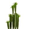 Cactus Plástico Alto Estrecho Hoja Verde 100 Cm