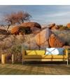 Fotomural - Paisaje Africano, Namibia , Tamaño - 350x270