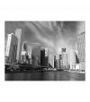 Fotomural - El Panorama De Chicago En Blanco Y Negro , Tamaño - 300x231