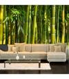 Fotomural - Oriental Garden , Tamaño - 400x280