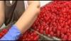 Fruta De Aragón Bañadas En Chocolate 2.5kg