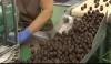 Lote De 4 Estuches Productos Gourmet Lapasion - Gajos De Naranja Confitada Con Chocolate