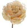 Flores Crudo