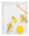 Estor Enrollable Happystor Estampado Digital Cocina Hscc59919 115x180