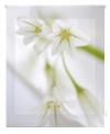 Estor Enrollable Happystor Estampado Digital Zen Hscz28020 190x180