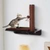 Pawhut Cama Para Gato Montado En Pared Hamaca Para Gatito Con Cojín Y Rascador 55x30x50
