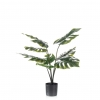 Emerald Planta Monstera En Maceta 85 Cm