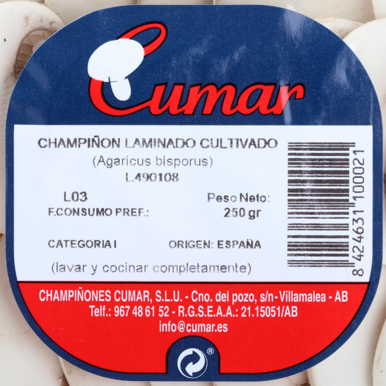 Champiñón laminado Campo bandeja 250 g - 3