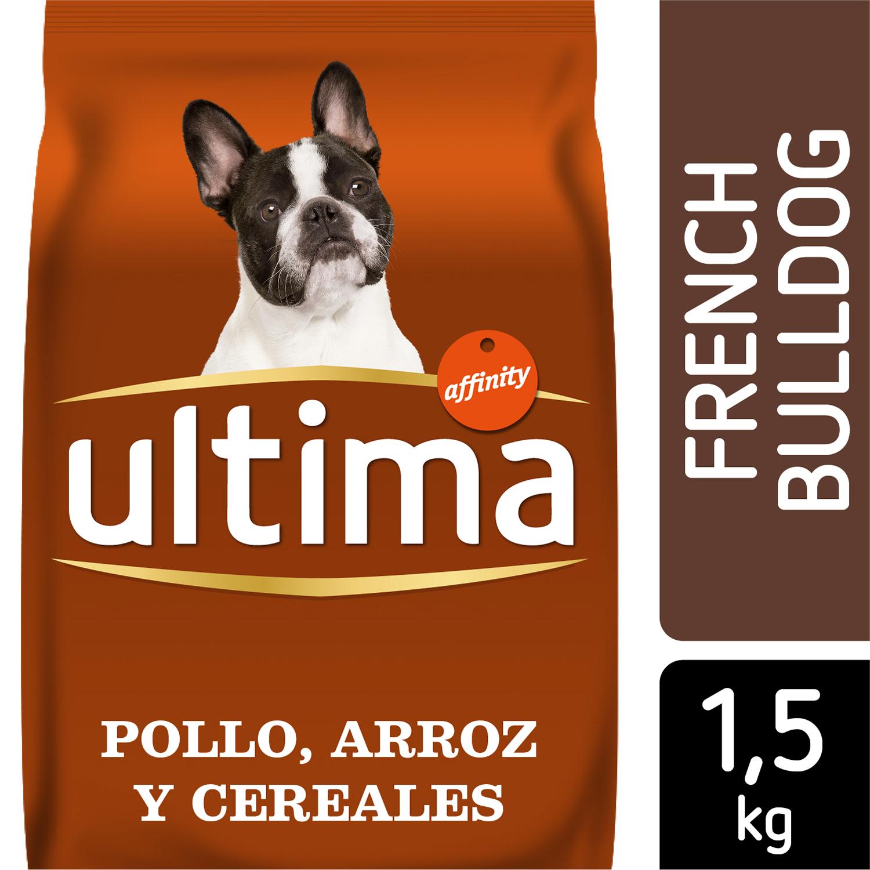 Alimento Perro Seco Adulto Bulldog Frances -