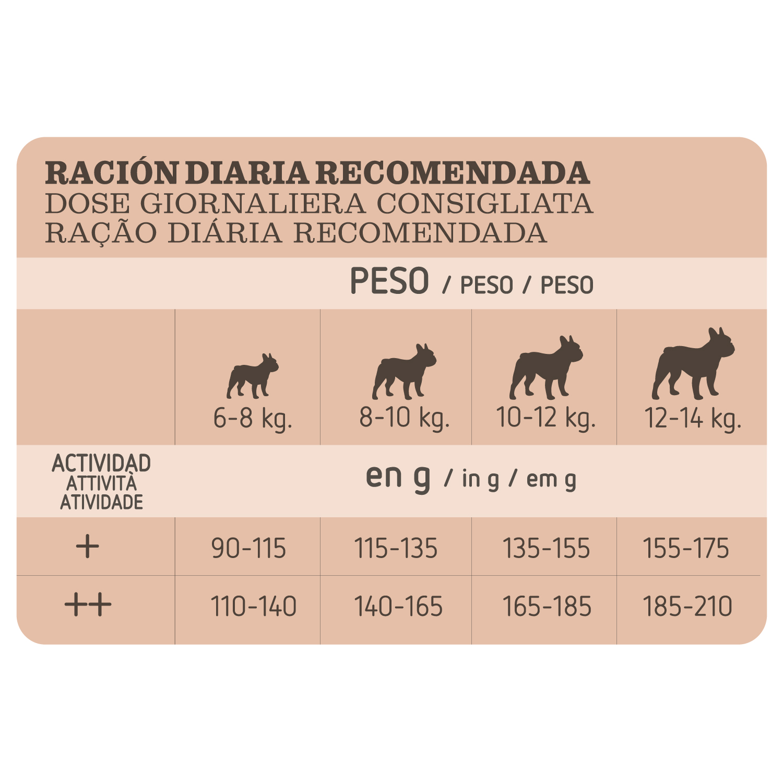Alimento Perro Seco Adulto Bulldog Frances - 4