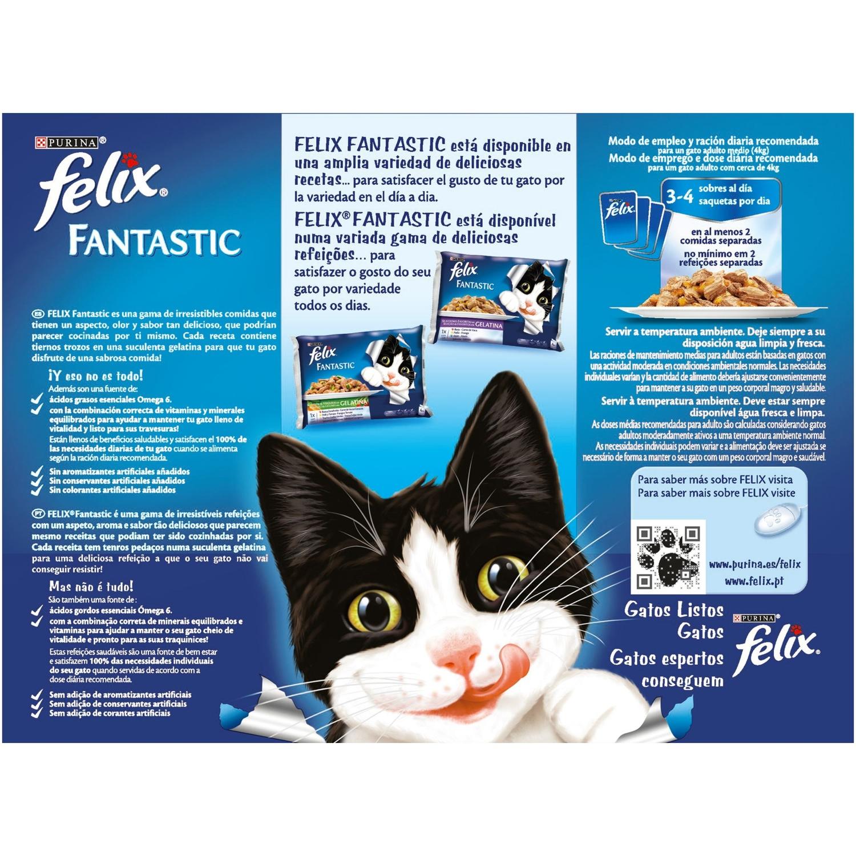 Comida para gatos Festín de Carnes en Gelatina - 2