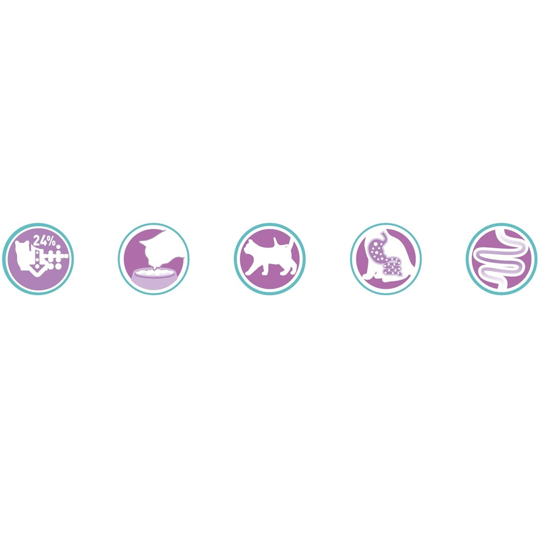 Purina ONE Bifensis Pienso para Gato Digestión Sensible Salmón y Cereales 1,5Kg - 4