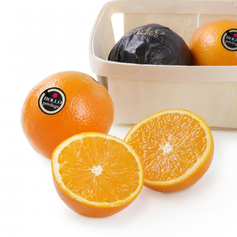 Naranja Marca Selecta Carrefour Bandeja 1 Kg