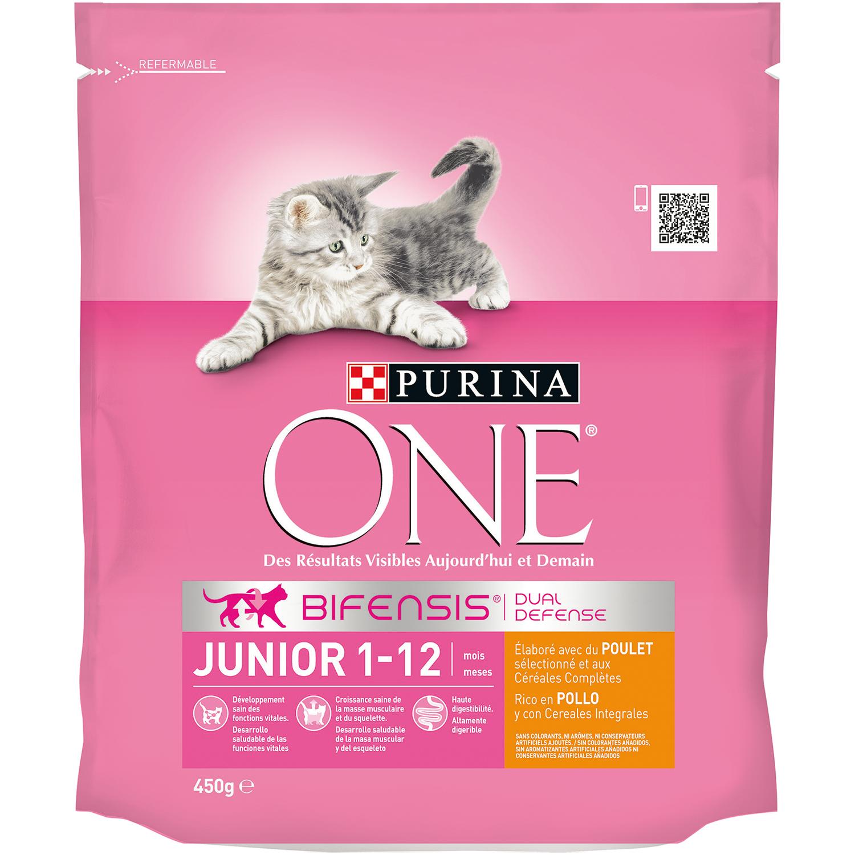 Purina ONE Bifensis Pienso para Gato Junior Pollo Y Cereales 450g