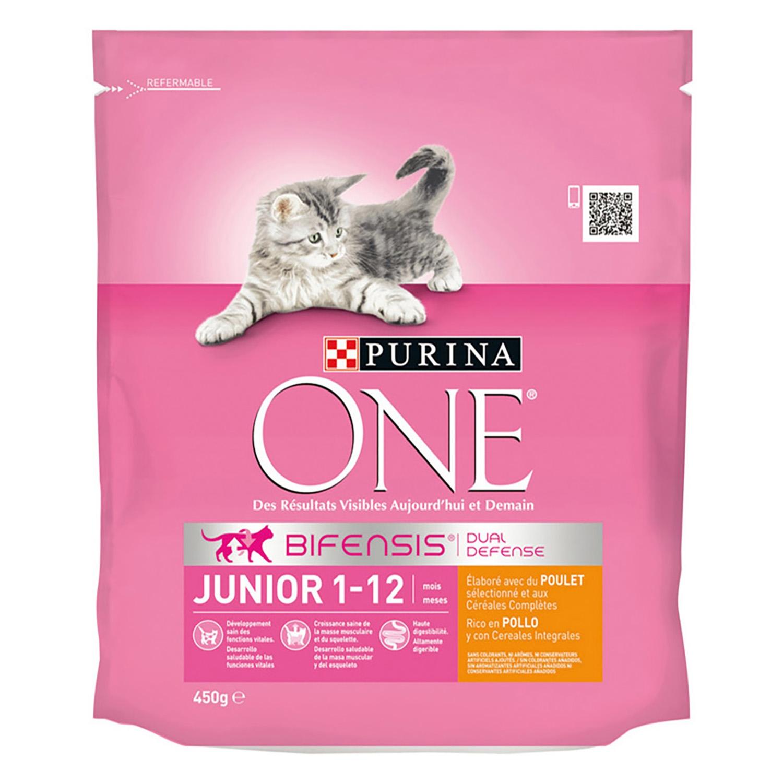 Purina ONE Bifensis Pienso para Gato Junior Pollo Y Cereales 450g -