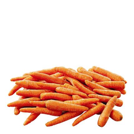 Zanahoria  -