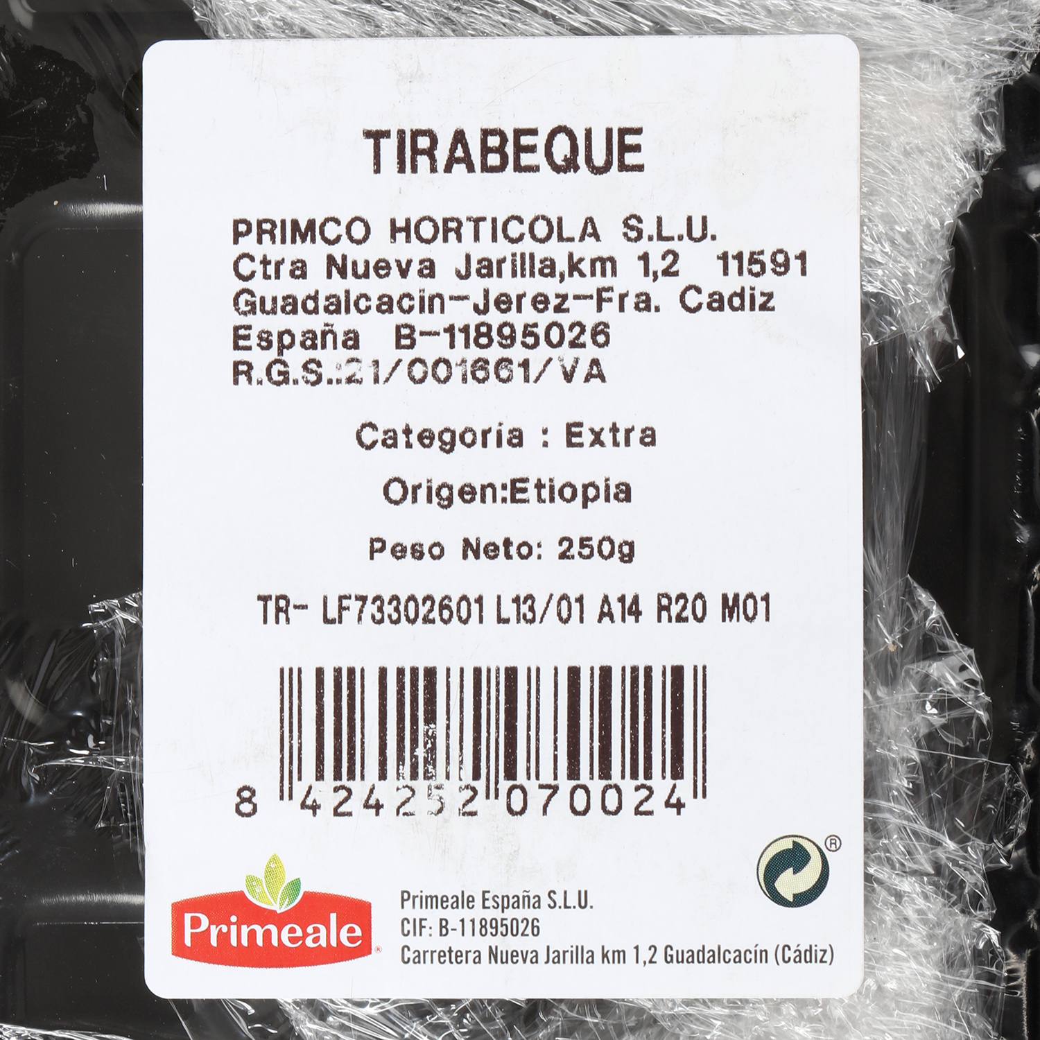 Tirabeques selecta  - 3