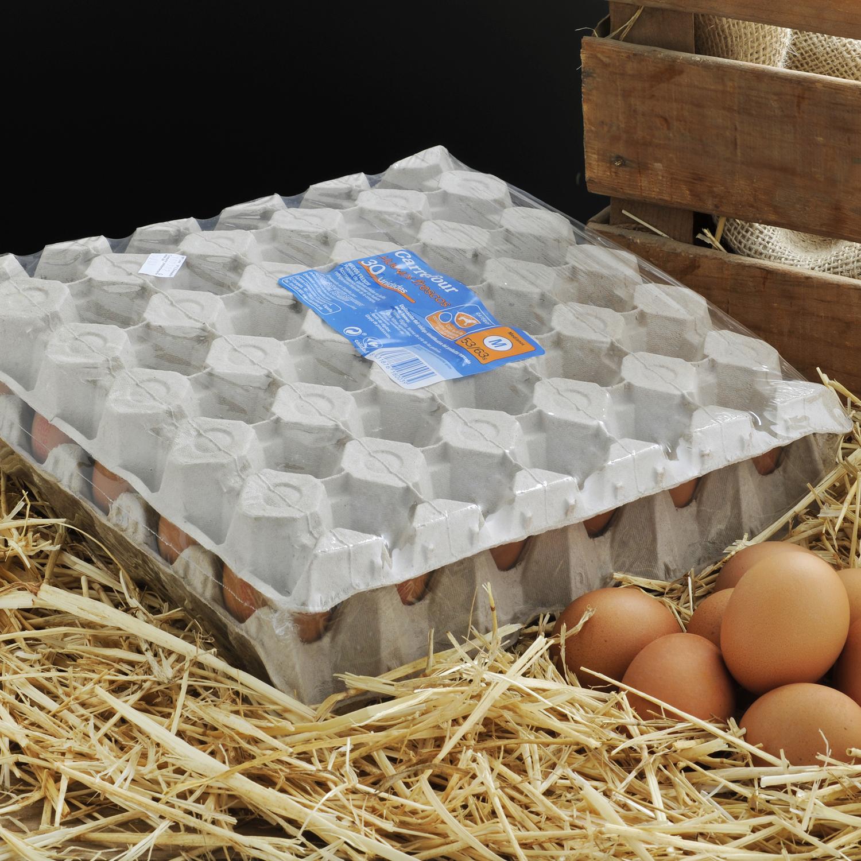 Huevos M