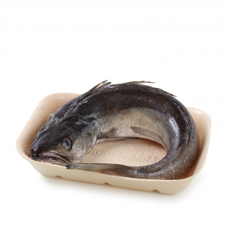 Pescadilla Pesscados del Cantábrico 500 g aprox - 5