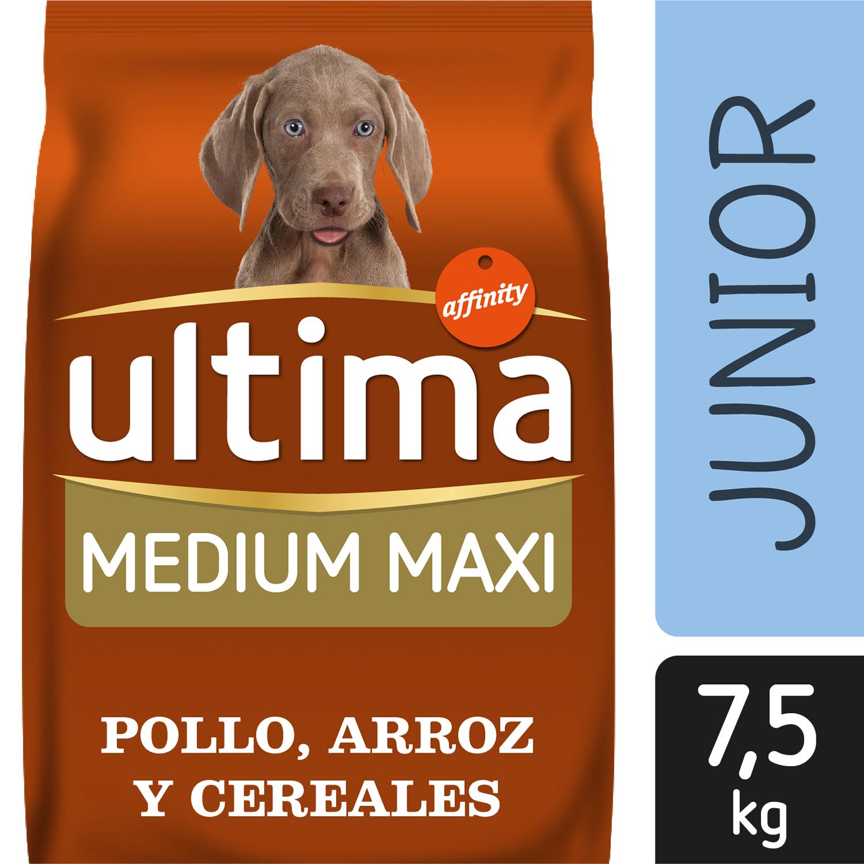 Alimento Perro Seco Ultima Medium Maxi Junior - 5