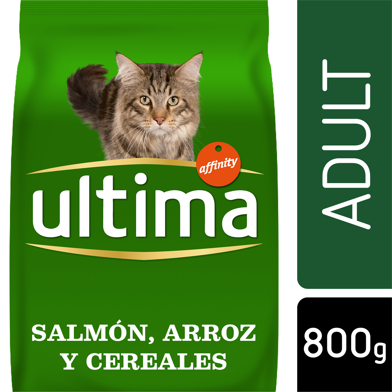 Alimento Gato Seco Adulto Salmon -