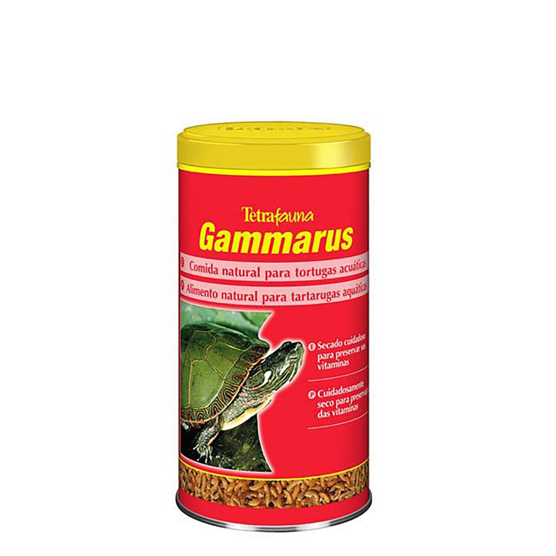 Tetragammarus 1 L