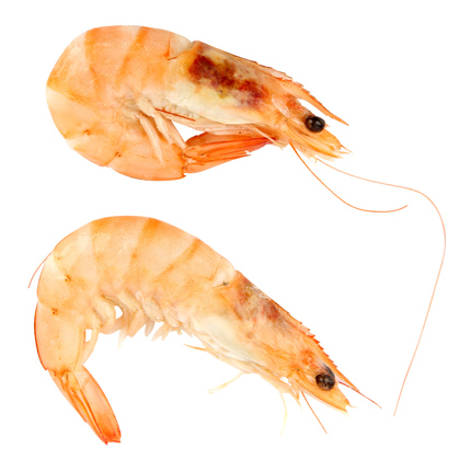 Langostino cocido Carrefour (30/40 ud) 1 Kg aprox -