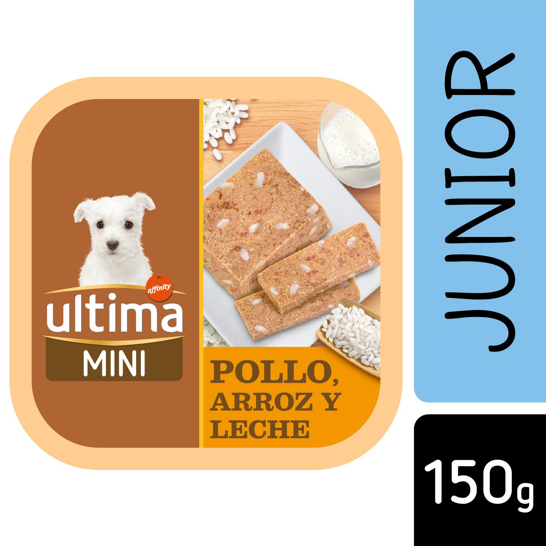 Alimento Perro Húmedo Mini Junior -