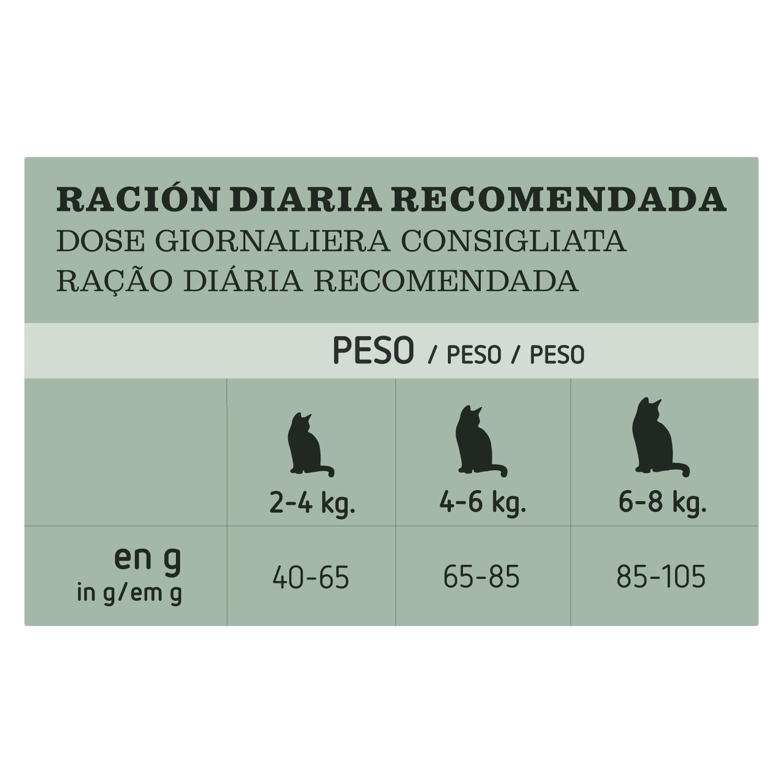 Alimento Gato Seco Adulto Pollo - 4