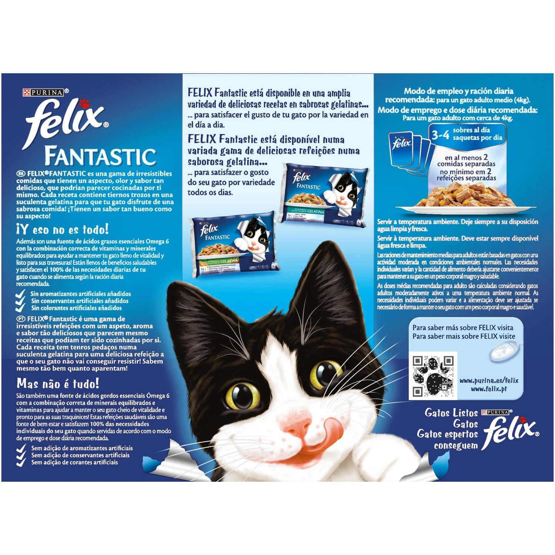 Comida para gatos Selecciones Favoritas en Gelatina - 2