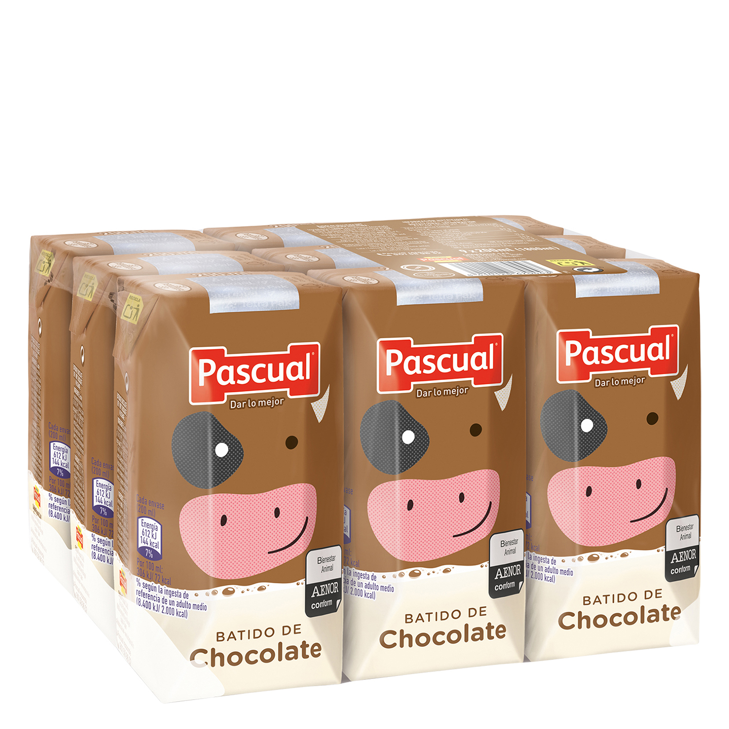 Batido de chocolate Pascual pack de 9 briks de 200 ml.
