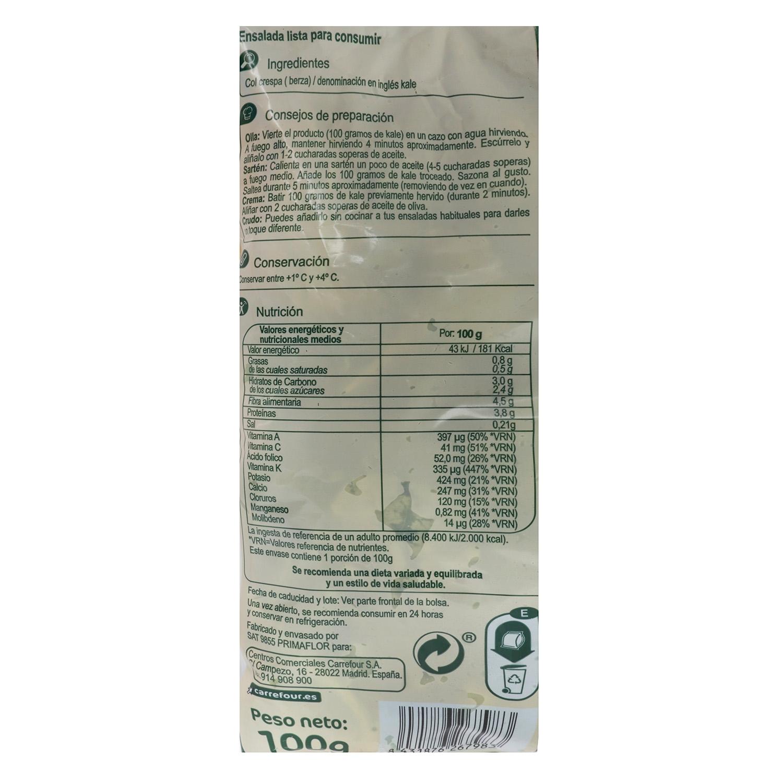 Kale brotes tiernos Carrefour bolsa 100 g - 2