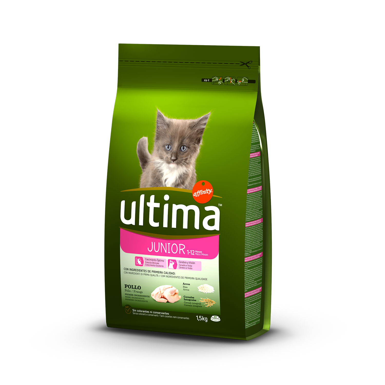 Alimento Gato Seco Junior