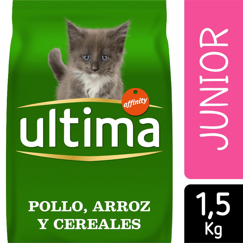 Alimento Gato Seco Junior -