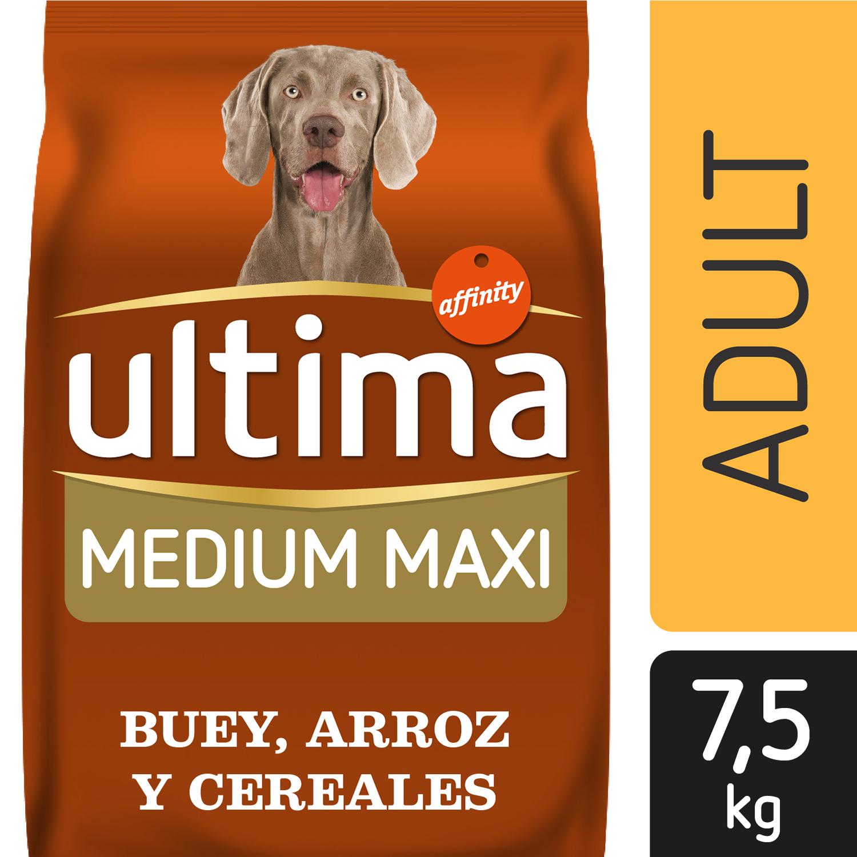 Alimento Perro Seco Ultima Medium Maxi Adulto Buey -
