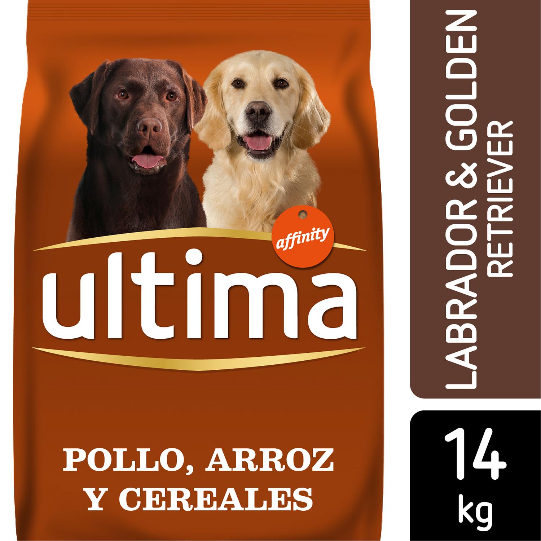 Alimento Perro Seco Adulto Golden Retriever -