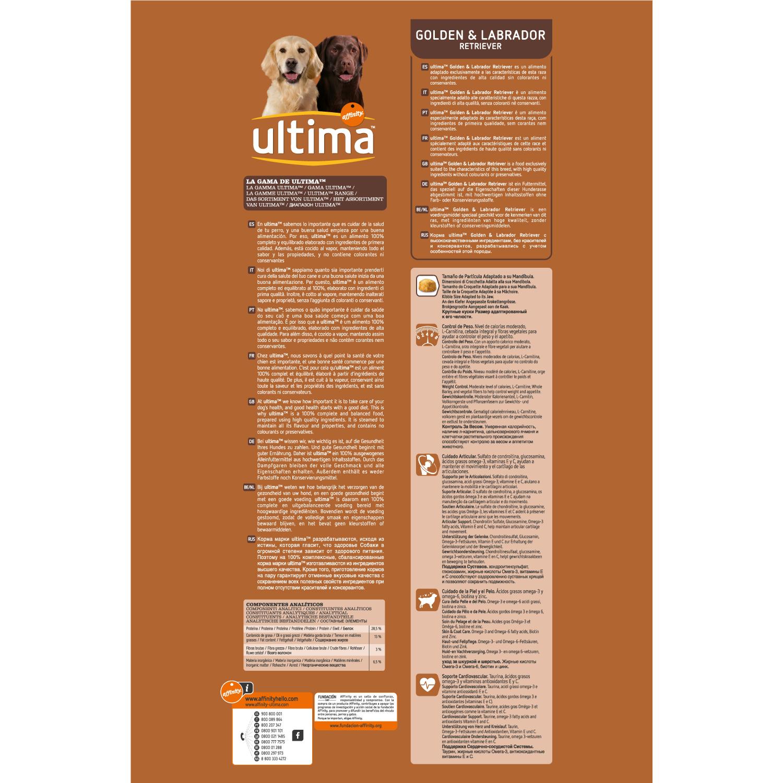 Alimento Perro Seco Adulto Golden Retriever - 2