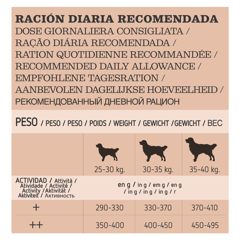 Alimento Perro Seco Adulto Golden Retriever - 4