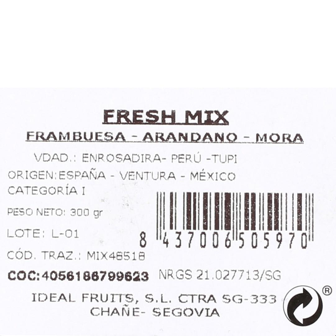 Surtido frutos rojos Carrefour tarrina 300 g - 3