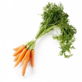 Zanahoria  manojo de 750 g