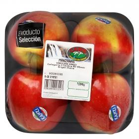 Manzana kanzi premium selecta Carrefour bandeja 4 ud 1 Kg aprox