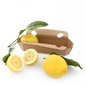 Limón con hoja Calidad y Origen Carrefour 3/4 uds