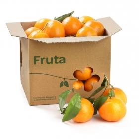 Mandarina con hoja de mercado a granel 500 g aprox